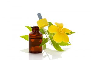 damiana extract and flower