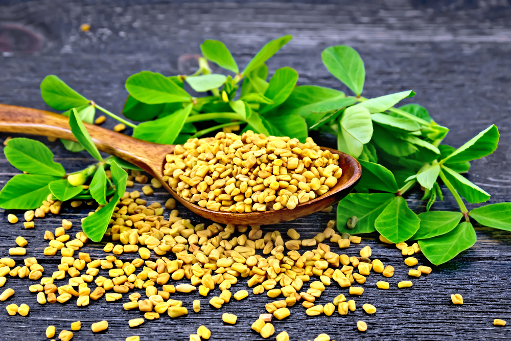 Does Fenugreek Raise Testosterone Levels?