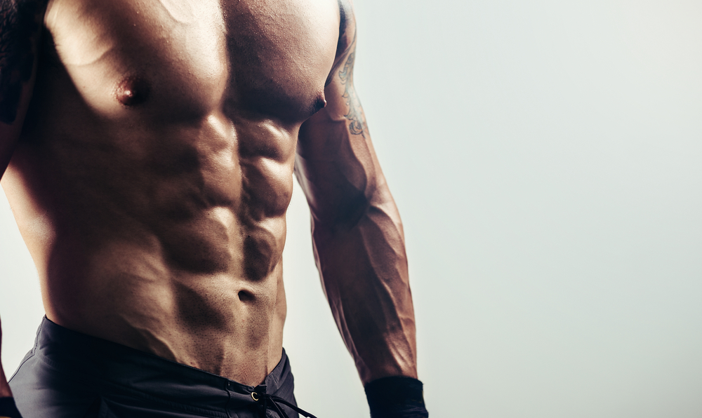 ripped guy torso