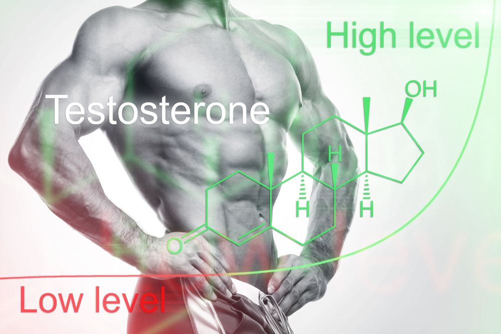 high and low testosterone levels