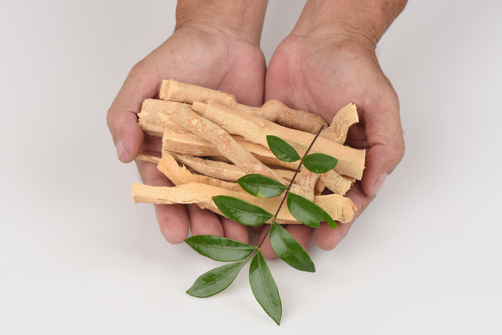 The Top 3 Most Potent Herbs For Boosting Your Testosterone