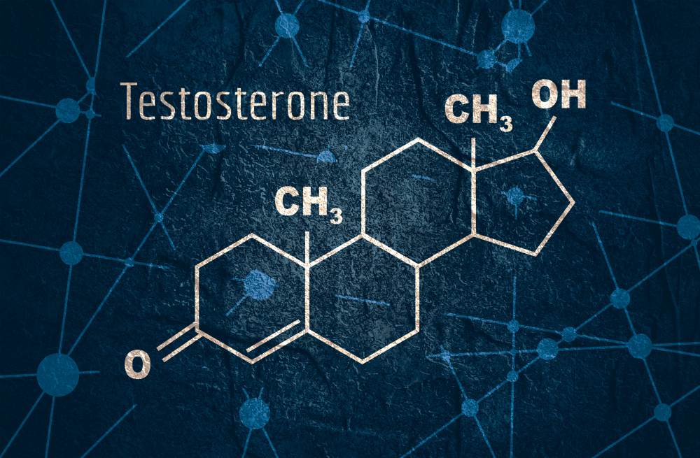 testosterone hormone structure