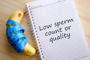 low sperm count and quality