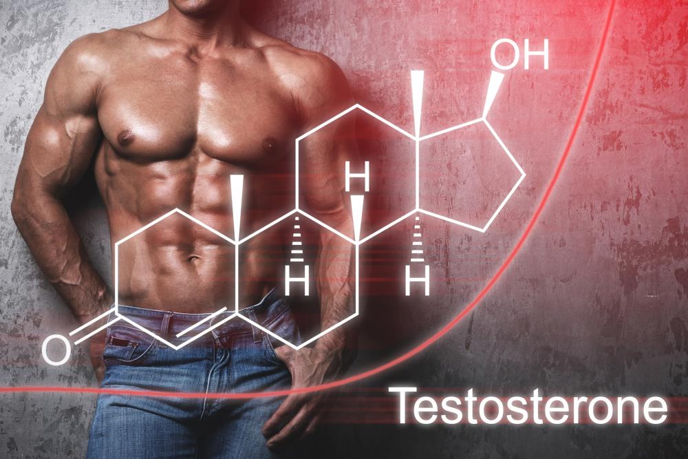muscular man and testosterone levels (male hypogonadism)