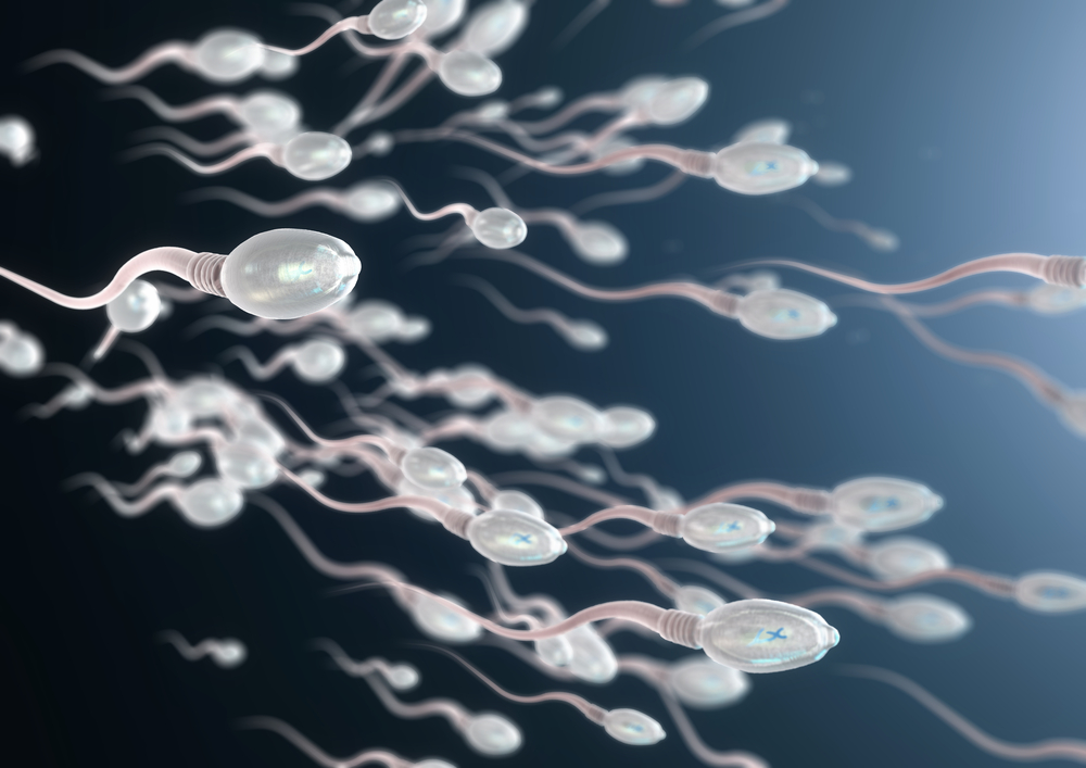 How Can I Increase My Sperm Morphology Naturally?